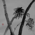 Bambus III